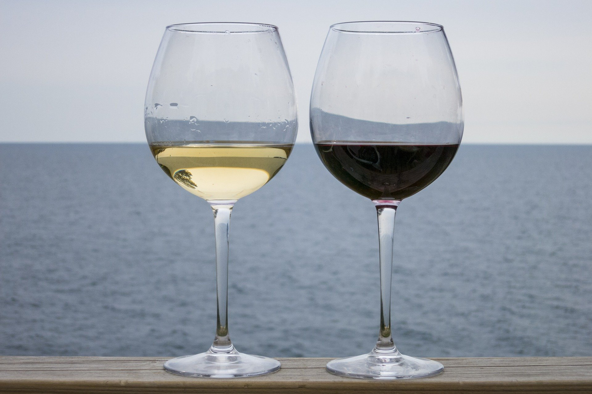 Impara qualcosa sui vari tipi di vino