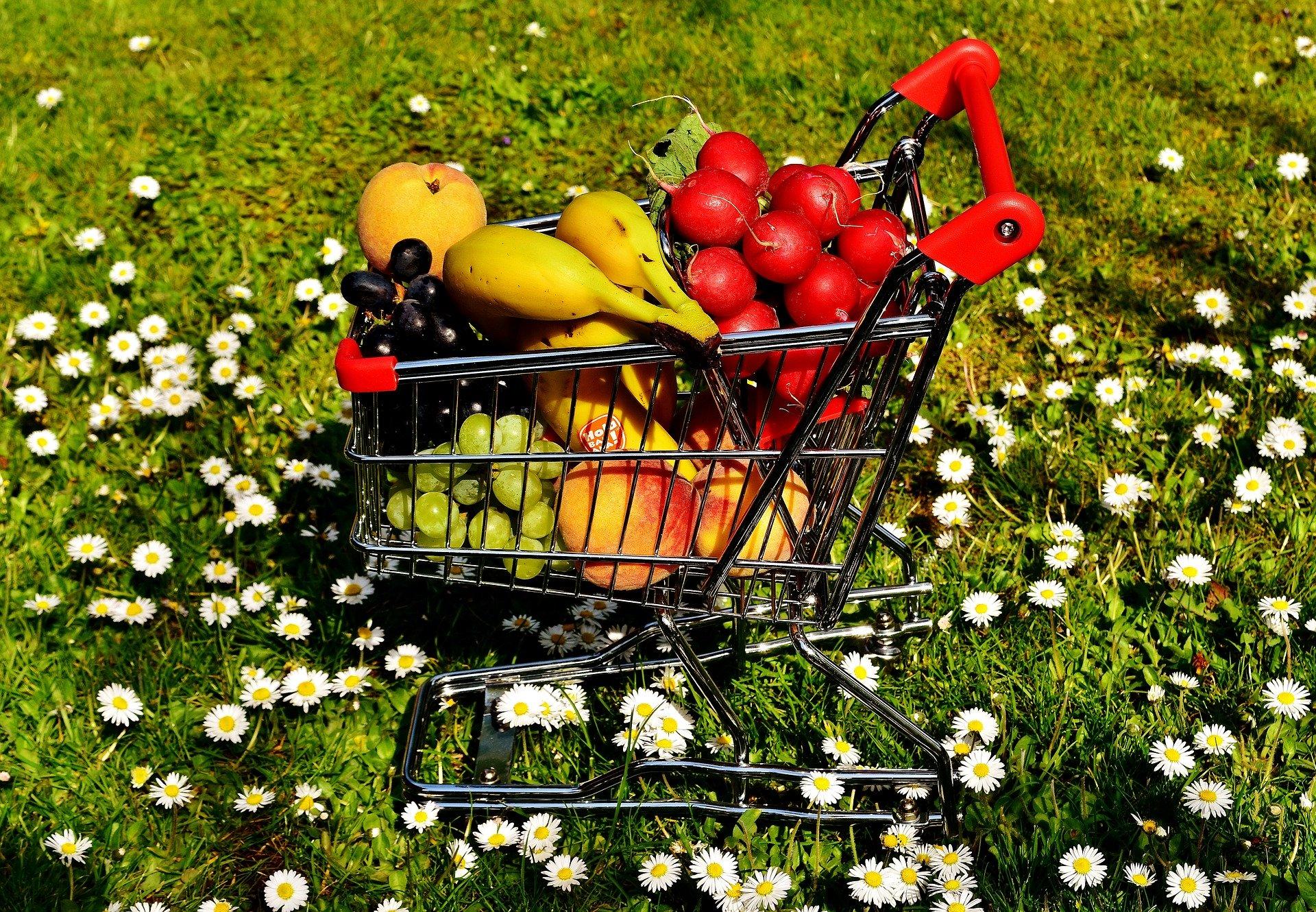 Il futuro del settore alimentare: 5 trend su cui puntano gli investitori